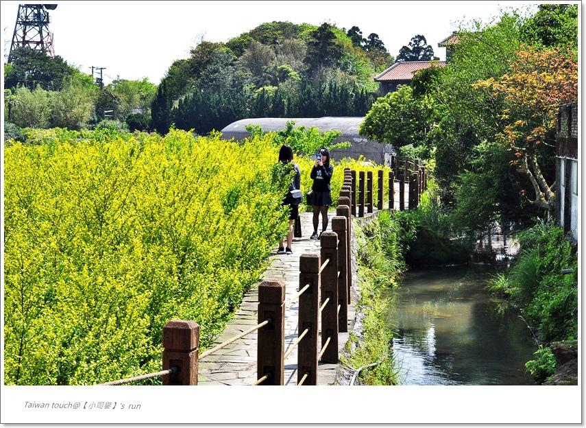 小司麥-竹子湖 (10)