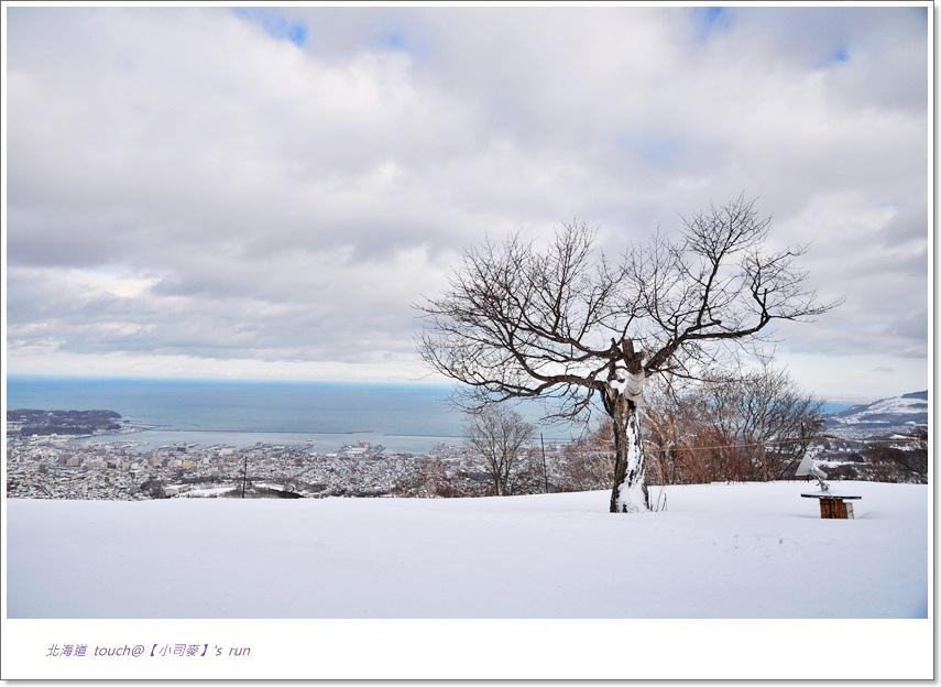 小司麥-雪景  (6)