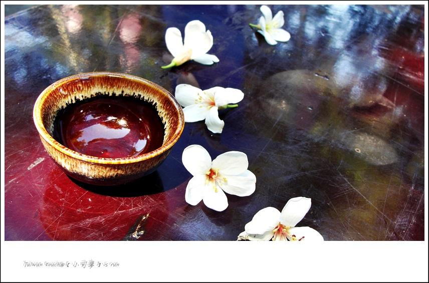 小司麥-土城桐花 (6)