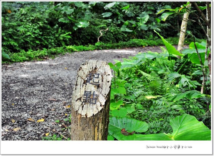 小司麥-林美盤石 (5)