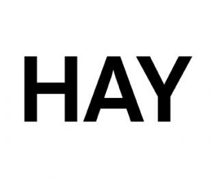 hay-310x260