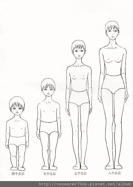 人体结构007