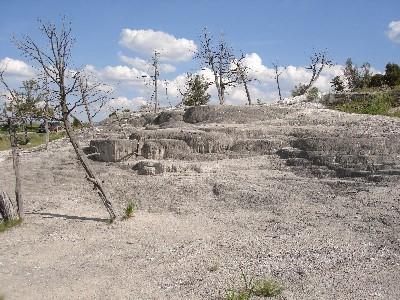 Terrace (dead)