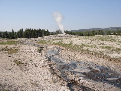 Old Faithful (north)