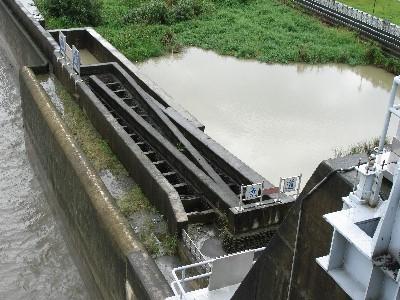 石岡壩魚梯