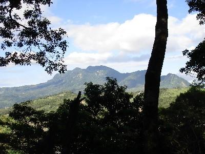 眺望都蘭山