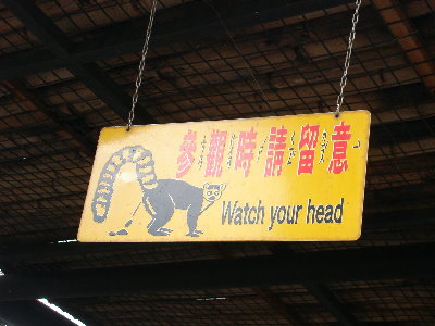 15 Watch your head.jpg