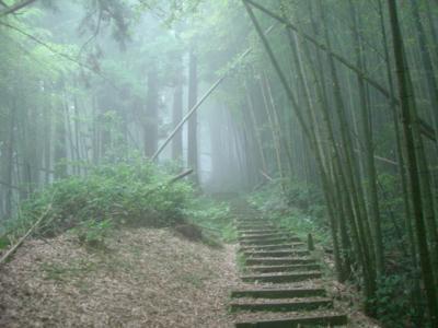 21 霧中小徑.jpg