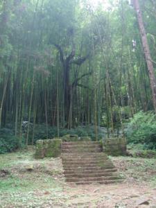 67 神社遺跡.jpg