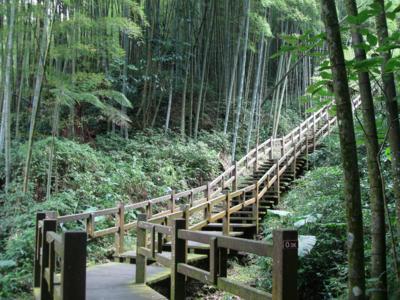 68 木造步道.jpg