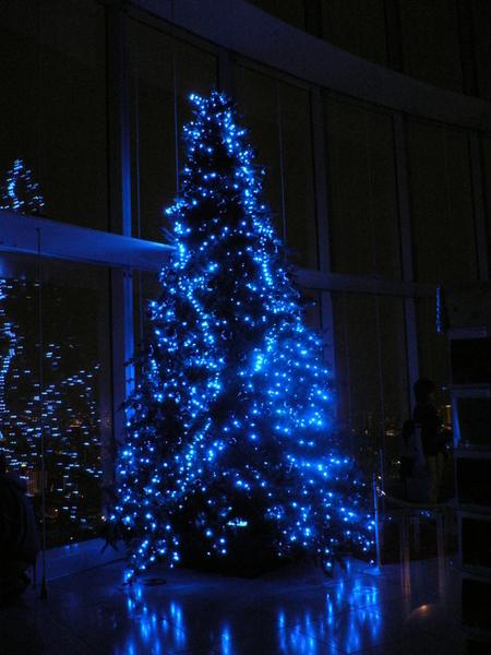 森美術館裡的耶誕樹