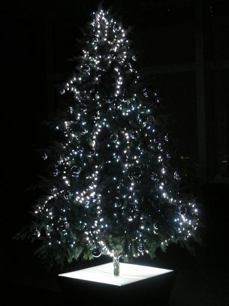 另一棵耶誕樹