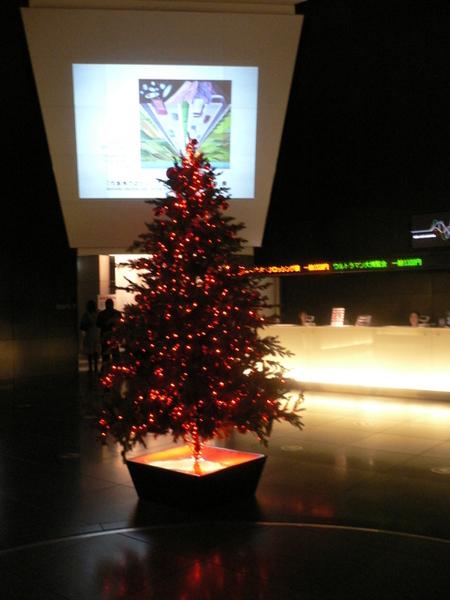 美術館門口的耶誕樹