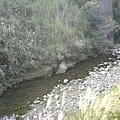 過了這條溪就到了另一側的斷橋