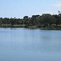 亞歷山大湖