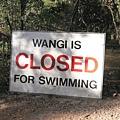 可惜不能下水....JPG