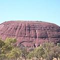 國家公園裡到處都是各種大石頭