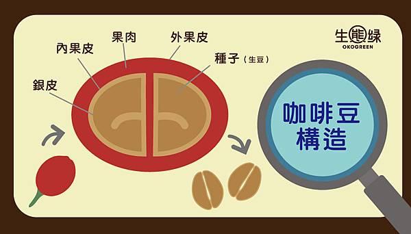 咖啡豆-水洗日曬3