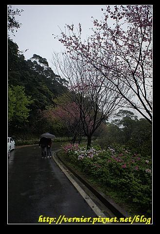 一支小雨傘
