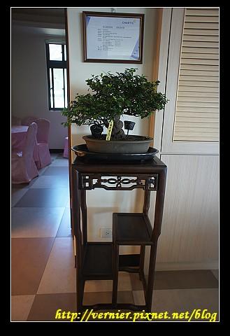 美麗的小盆栽和凳子