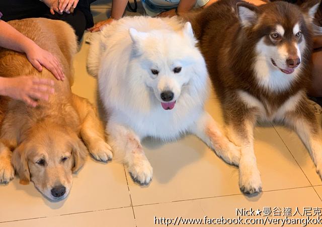 曼谷達人尼克 HoPs Dog Cafe-4.jpg
