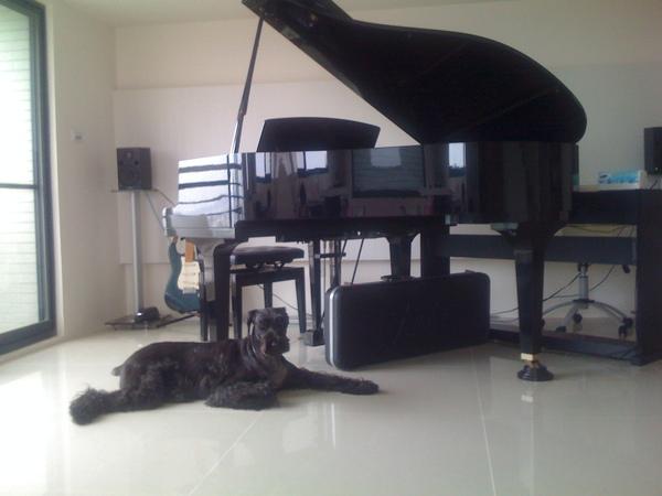 我的鋼琴和【What】