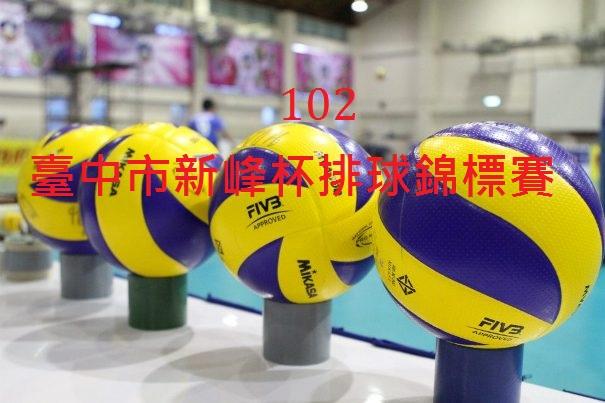 102臺中市新峰盃
