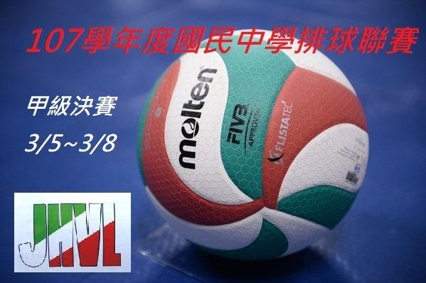 107學年國排甲決賽.jpg
