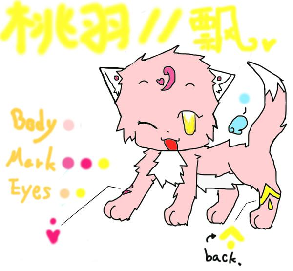 貓戰士-1.jpg