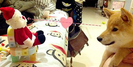 天蔣與聖誕老人
