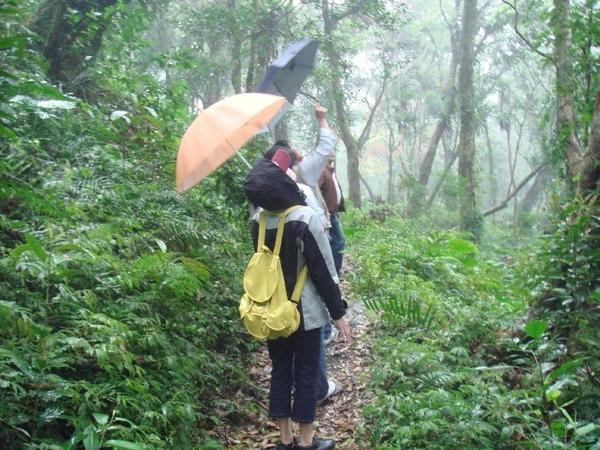 45山間旅遊-小雨.JPG