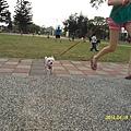 SAM_3581.jpg