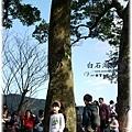 0120白石湖吊橋058