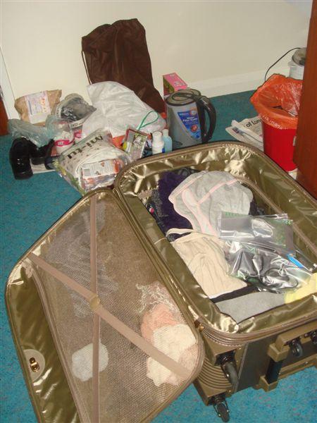 就是這卡皮箱,讓我通過海關時,還特地被攔下來
