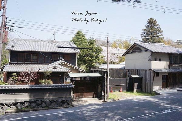 IMG_0308_2.JPG