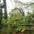 Day2.仙女與樵夫 @ 陰雨綿綿裡的小木屋~