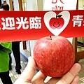 入境送蘋果