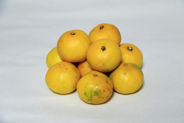 水果 (1).JPG