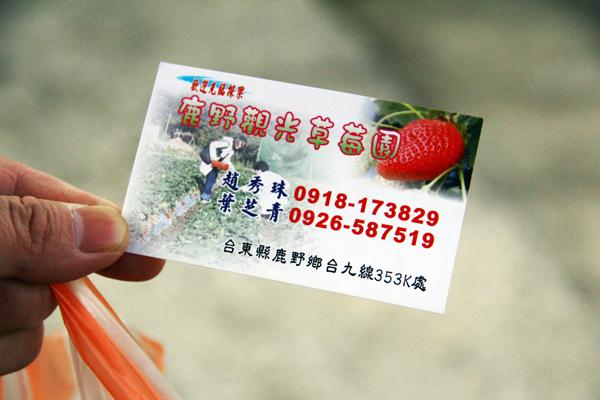 採草莓 (11).JPG