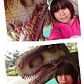 16-03-31-23-21-48-192_deco.jpg
