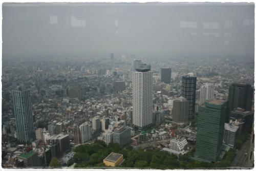 45樓view