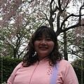 小穗&櫻花
