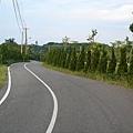 田邊小路~自行車步道