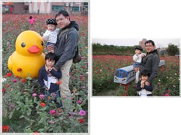 IMG_6586-tile.jpg