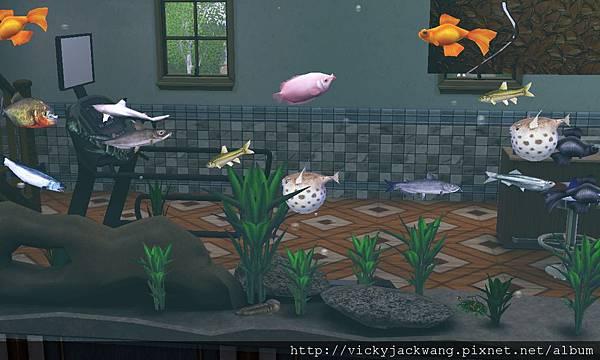 二樓大浴室魚缸牆面