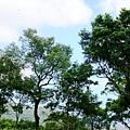 PhotoCap_DSC03077.jpg