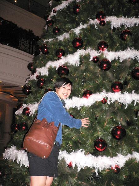 胖子跟聖誕樹