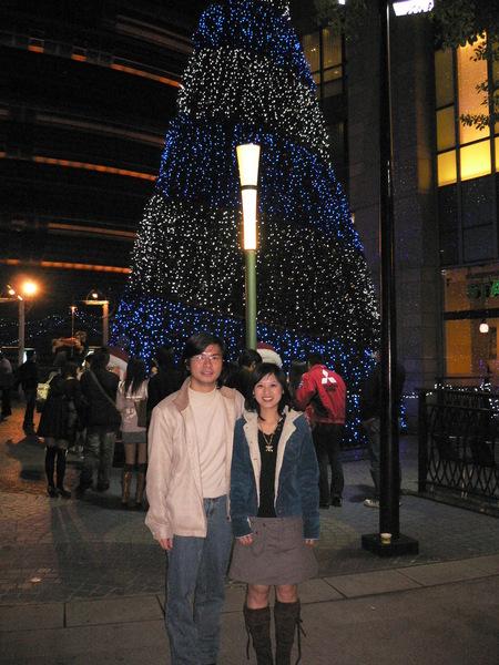蒐集聖誕樹計畫