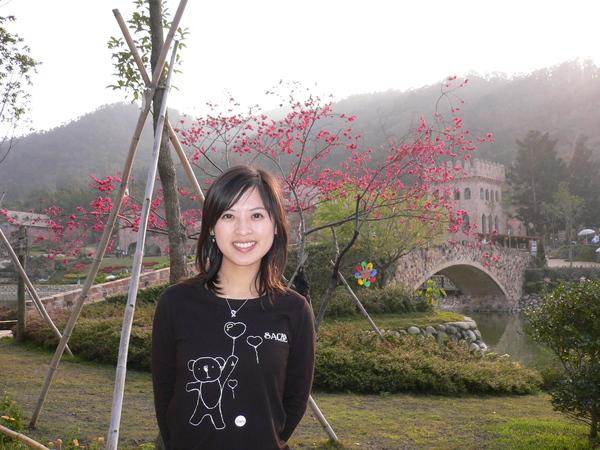 櫻花開得很漂亮了