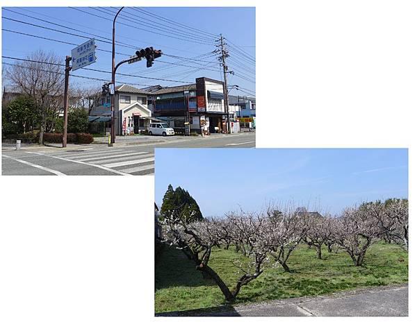 miyaji2.jpg